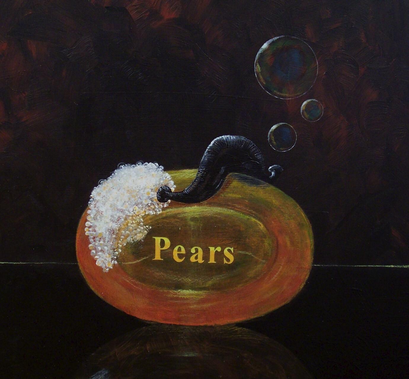 Rob Kirbyson, Pears, 2012, Acrylics on aluminium, 45 x 40 cm.